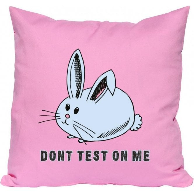 Don't Test On Me Cushion