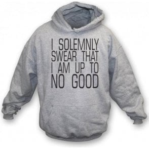 I Solemnly Swear I Am Up To No Good Hooded Sweatshirt